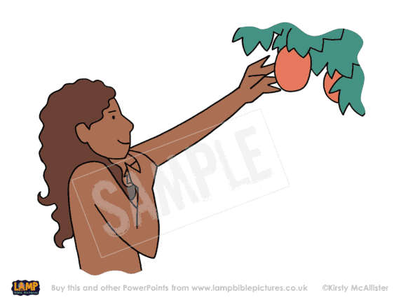 Eve takes the fruit