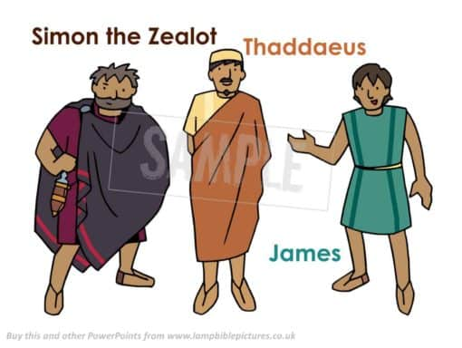 Simon the Zealot, Thaddaeus, James